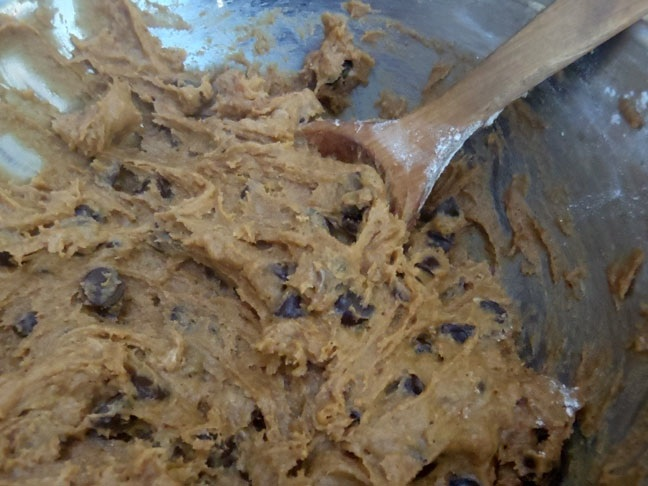 PUMPKIN SPICE CHOCOLATE CHIP COOKIE DOUGH