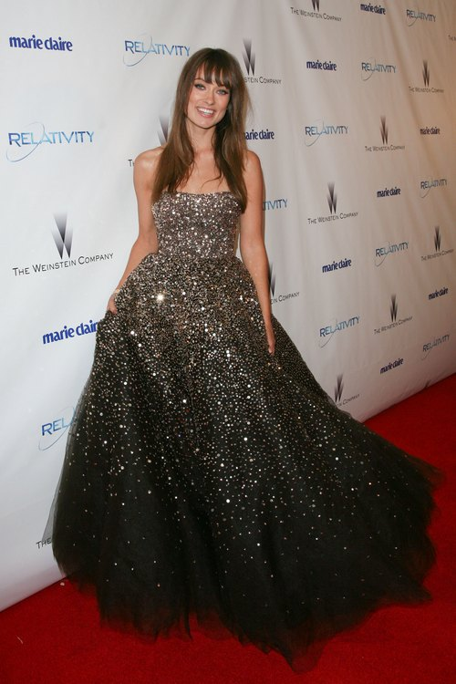 olivia wilde golden globe gown, silver and gray sparkle dress