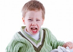 Taming Toddler Tantrums