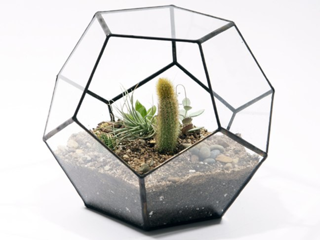 Handmade Glass Terrariums By Score and Solder