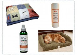 Alternative Flea Control Remedies