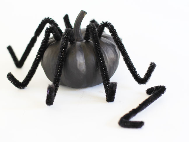 Jack-Be-Little Spider Craft DIY - Step 2