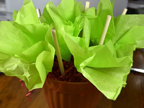 Cupcake Bouquet - Step 13