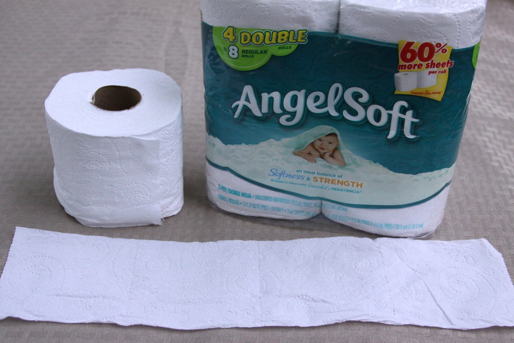Origami Toilet Paper Butterfly Craft - Step 1