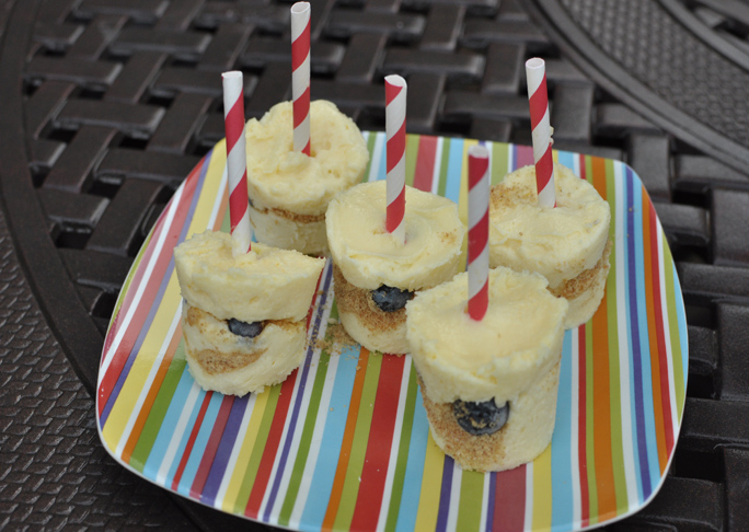 Blueberry Cheesecake Pops Recipe Final
