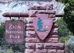 Hit the Road: Family Trip to Zion National Park