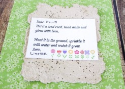 Handmade Paper Seed Cards