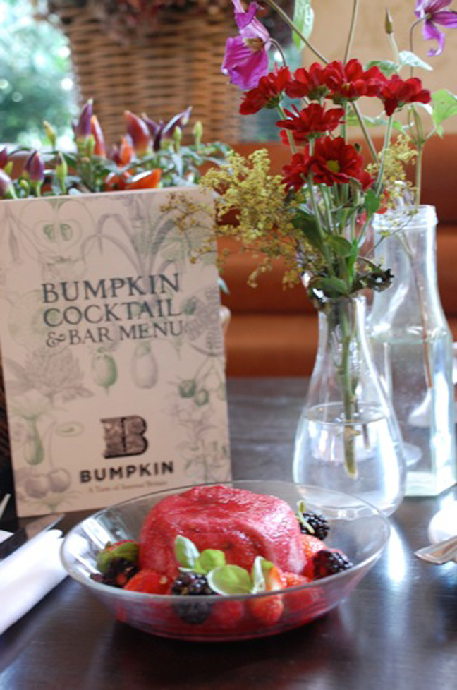 bumpkin-summer-pudding-recipe-3