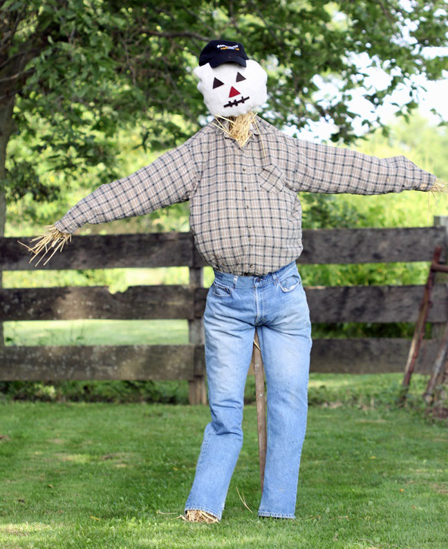 a completed diy scarecrow