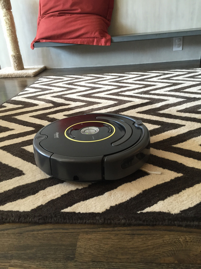 robot rug my irobot roomba robot vacuum a love hate relationship
