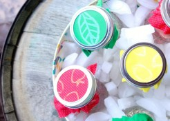 How To Make Fruit Infused Water Jars for Summer Picnics