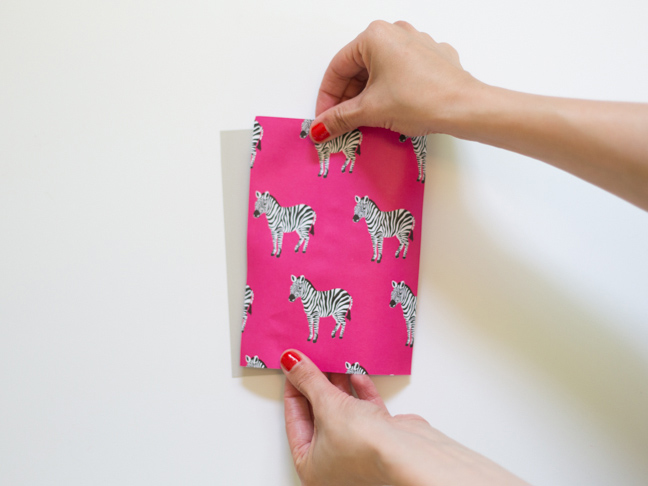 pink-zebra-paper-two-hands