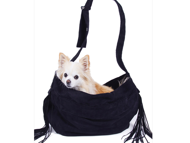 best_pet_dog_carrier3