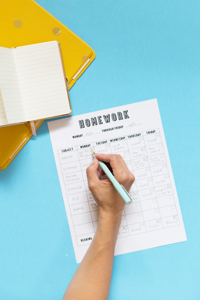 hand-pen-homework-chart-binder