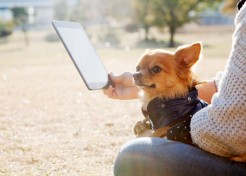 7 Best Apps For Dog Owners