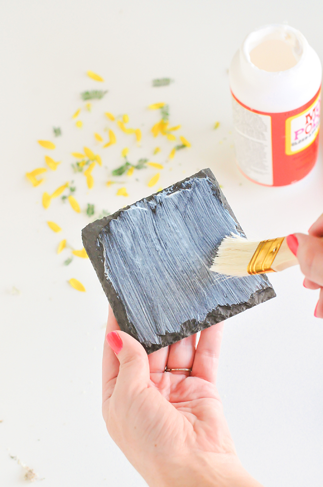 painting a coaster with mod podge to prepare it for foraged leaves