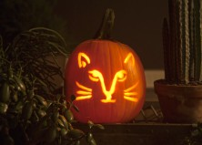 How To Carve a Pumpkin Perfectly & 31 Free Pumpkin Carving Templates