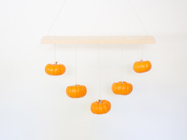 pumpkins-measured-at-different-lengths