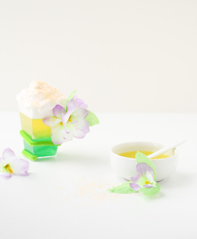 garden-fairy-jello-cups-diy-2