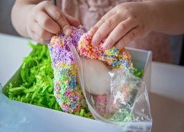 Egg Drop Project Ideas That Really Work