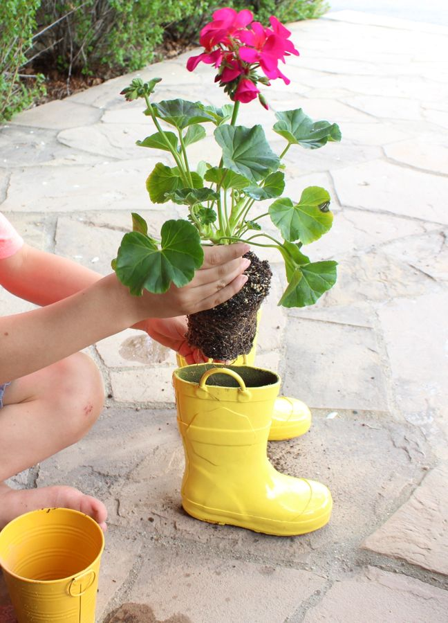 planting-a-flower-inside-a-yellow-rain-boot