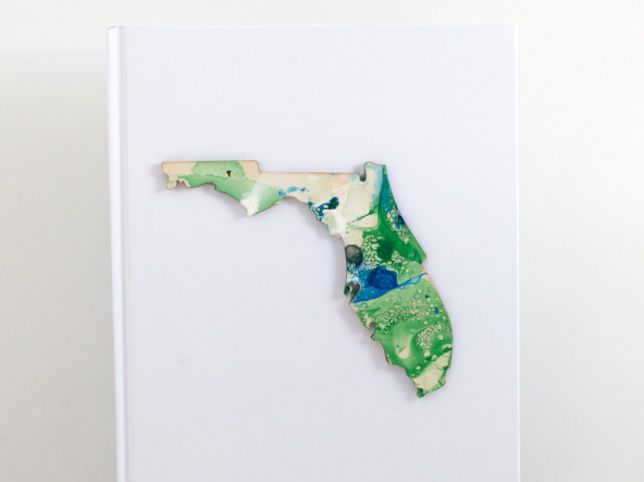 green-and-blue-marbled-state-of-florida-cut-out
