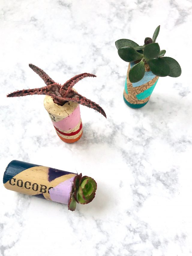 DIY Wine Cork Mini Planters