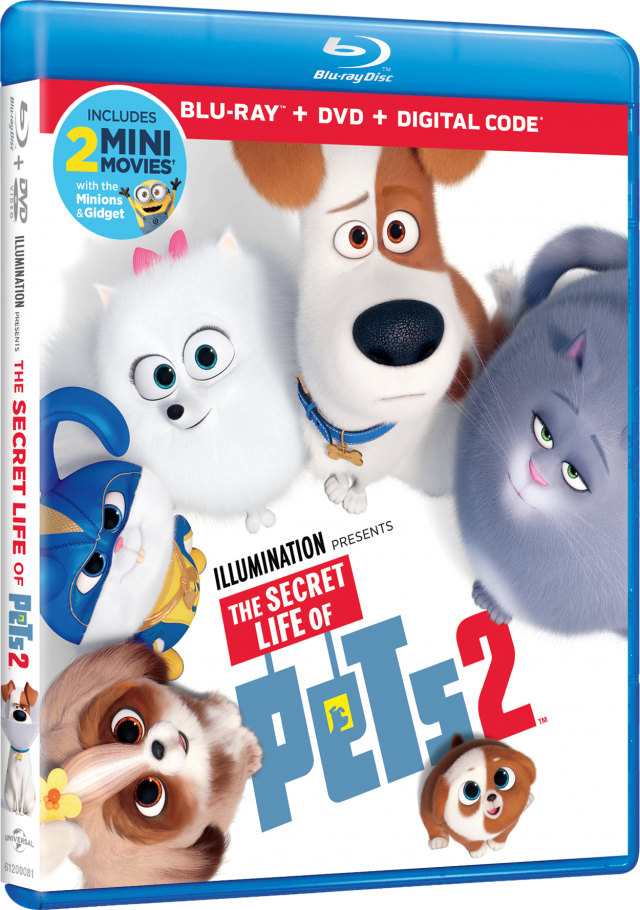 Plan an End of Summer Party With Secret Life of Pets 2 and This Mom-Approved Activity Kit