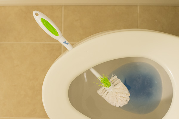 Easily Dry Out Your Toilet Brush