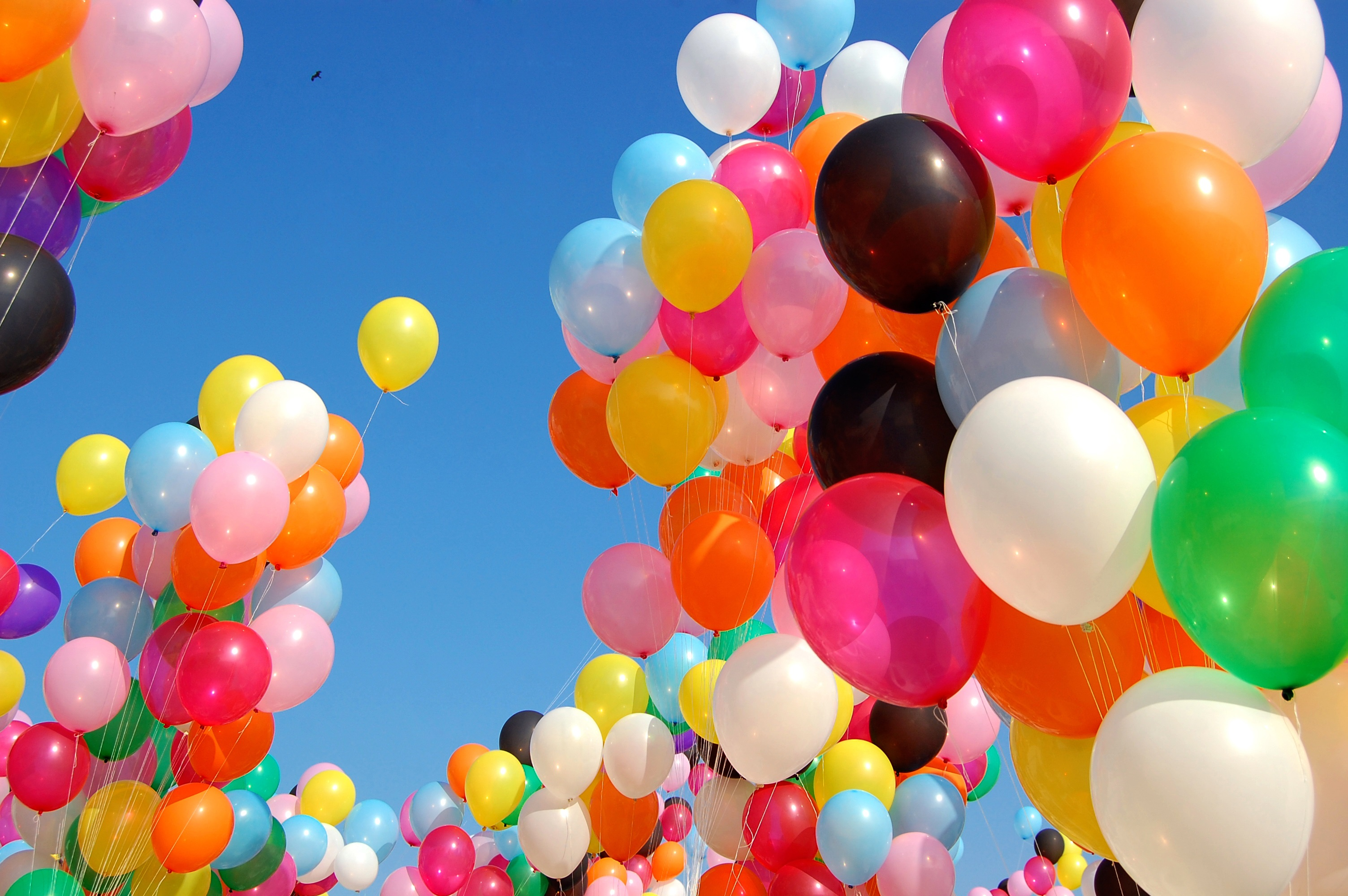 staple at every birthday party balloons both inflated but  #BD6A0E