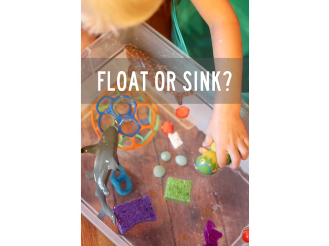 Float or Sink Experiment
