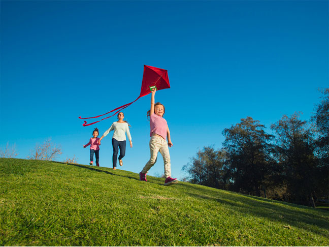 Fly kites at home in the park